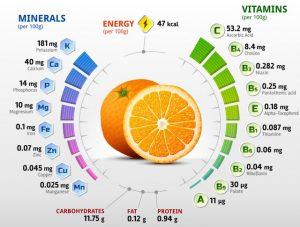 Seven Major Nutrient Types - Nutrition Consultant - Nutrients - Minerals
